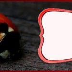 Free Online Ladybug Template 150x150 - Free Printable Ladybug Invitation Template