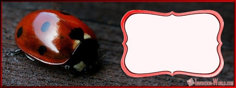 Free Online Ladybug Template - Ladybug Invitation Templates - Free Download