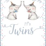 Twins Baby Shower Invitation Card